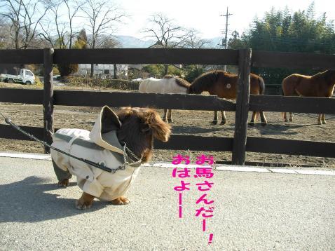 変換 ~ 馬