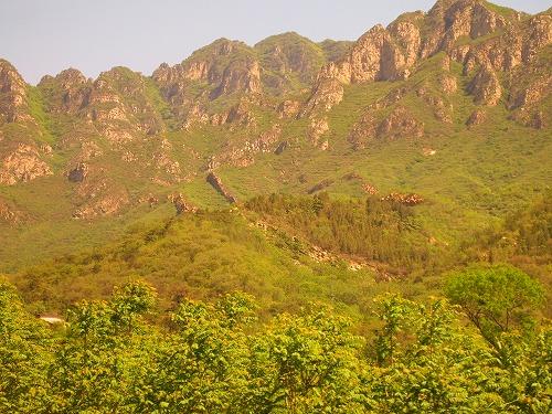 2011china 485