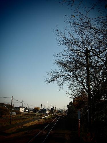 PB210051.jpg