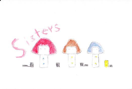 sisters収縮
