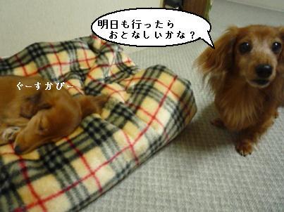 画像 097blog