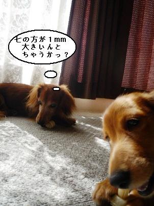 画像 139blog