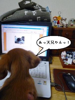 P1050430blog.jpg