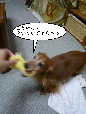 P1050821blog.jpg