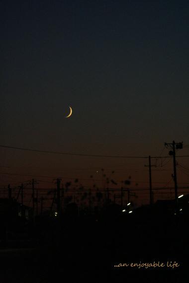 moon20081002.jpg