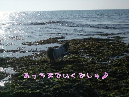 写真00109