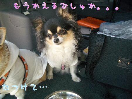 写真00126