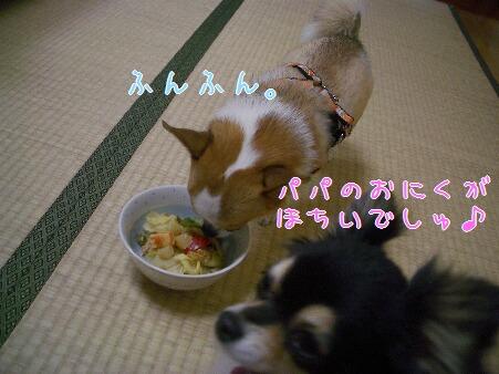 写真00151
