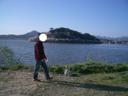 写真00161