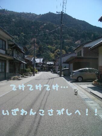 写真00199