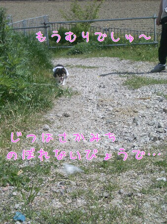 写真00180