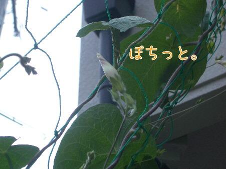 写真00083