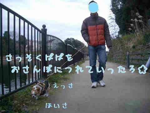 resize2696.jpg