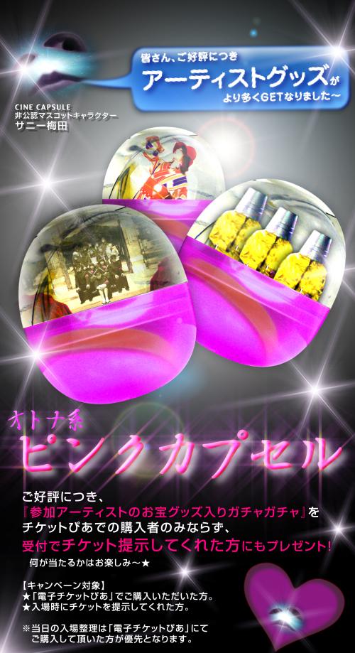 pink_capsule_04.jpg