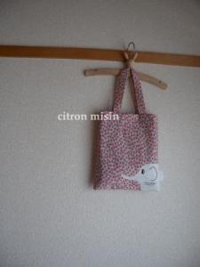 DSCN2236_convert_20090621184119.jpg