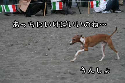 IMG_5592.jpg