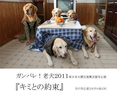 ガンバレ!老犬2011 『キミとの約束』の詳細はこちらから。