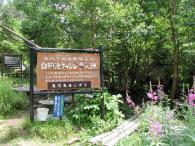 080824_camp.jpg