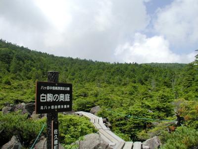 080824_okuniwa.jpg