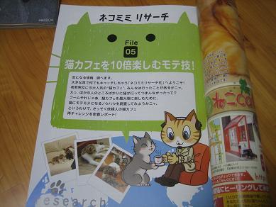 猫モテテク