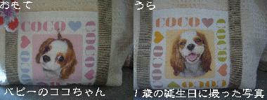 img20080729_p.jpg