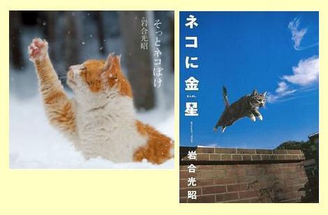 iwago2.jpg
