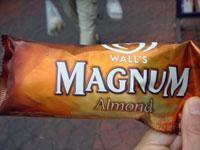 マグナム1