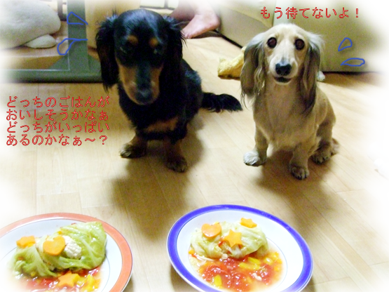 20070514-003.png