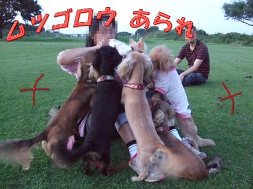 20070915-002.jpg