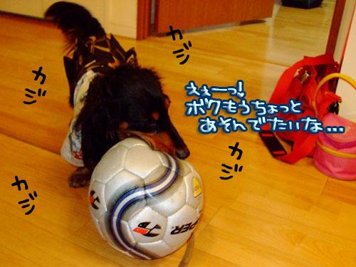 20080111-067.jpg