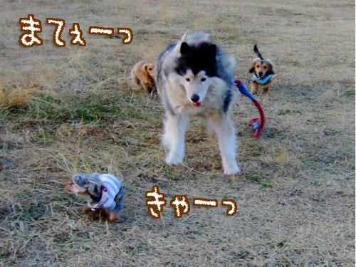20080127-050.jpg