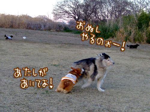 20080127-052.jpg
