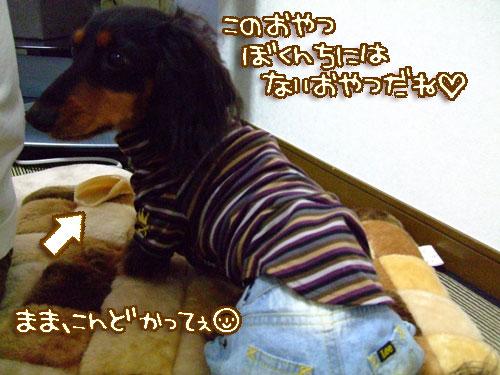 20080208-034.jpg