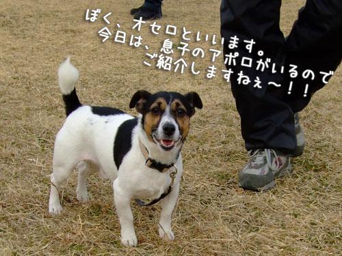 20080302-008.jpg