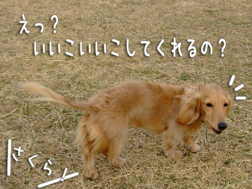 20080302-010.jpg