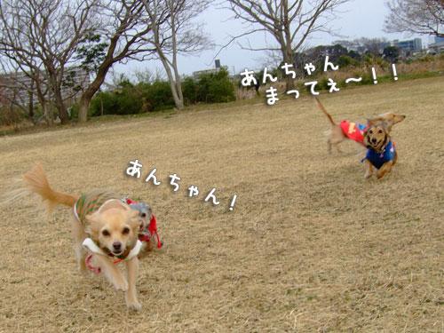 20080302-033.jpg