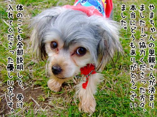 20080323-099.jpg