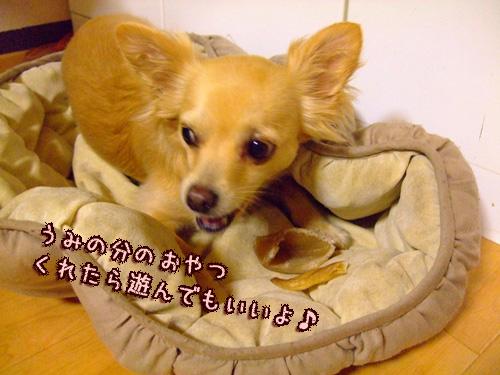 20080412-104.jpg