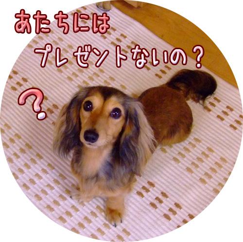 20080514-059.jpg