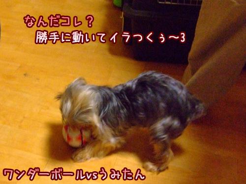 20080514-117.jpg