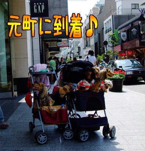 20080606-059.jpg