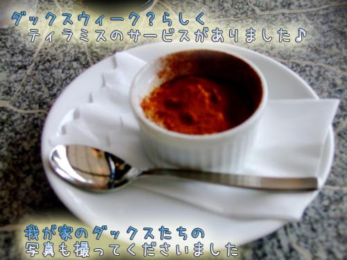 20080712-063.jpg