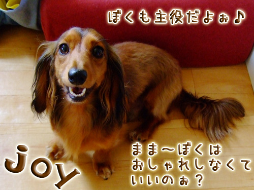 20080719_02--004.jpg