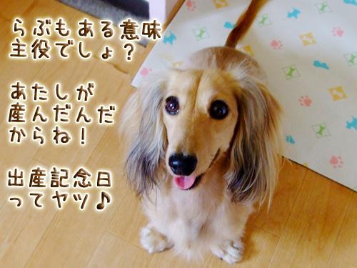 20080719_02--005.jpg
