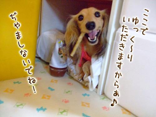 20080719_02--011.jpg