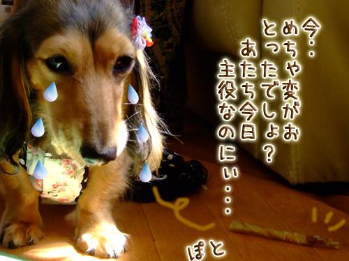 20080719_02--025.jpg