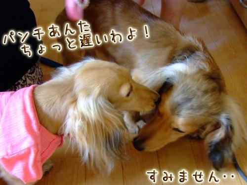 20080719_02--036.jpg