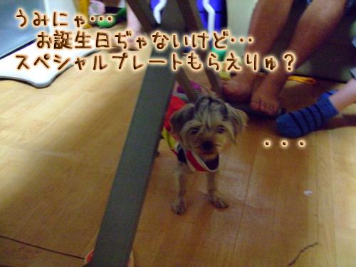 20080719_02--103.jpg