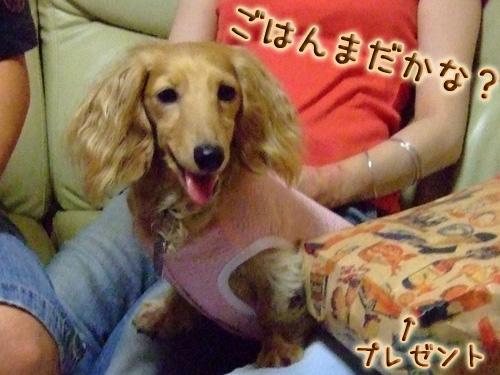 20080719_02--104.jpg