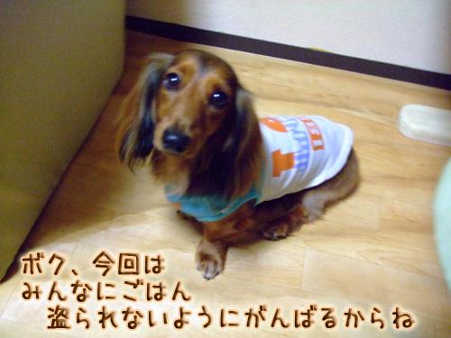 20080719_02--105.jpg